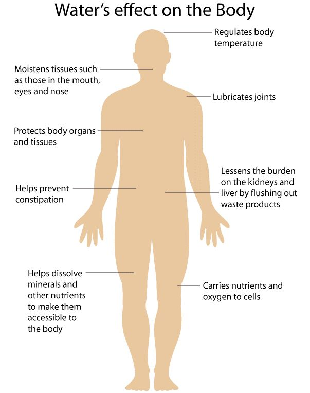 human body. The human body consists of 70%