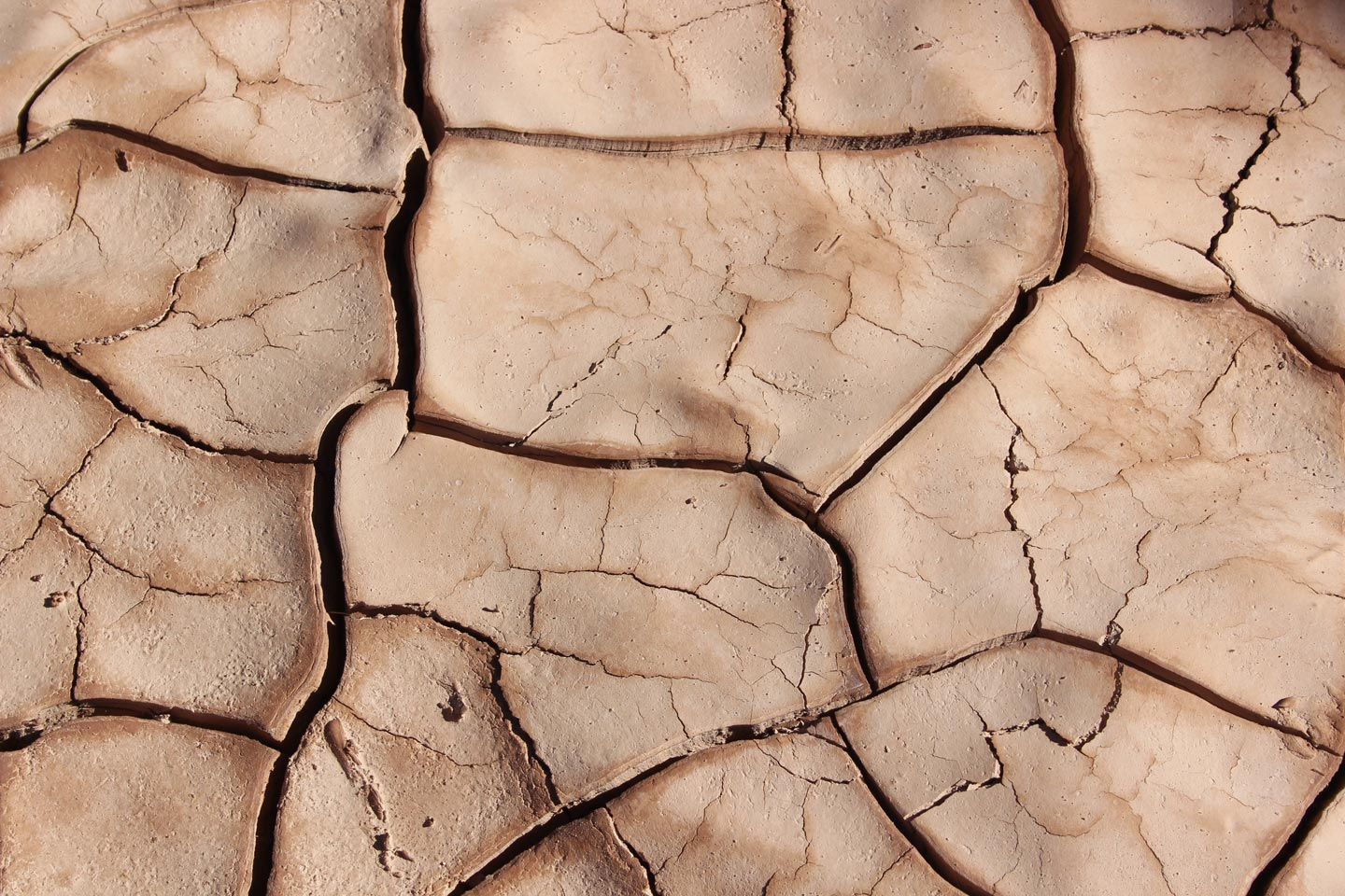 What Causes a Drought